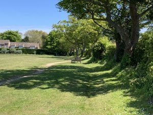 Blakeney Pastures