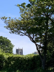 View of St Nicholas' church Tower from New Road