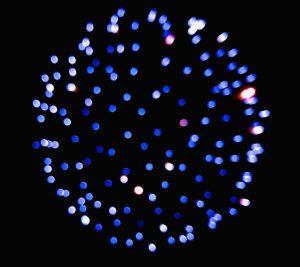 Blakeney Fireworks
